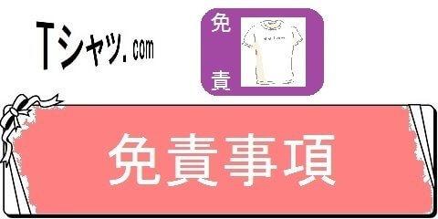 オリジナルTシャツの通販サイトレディーS・免責事項(カテゴリ)画像